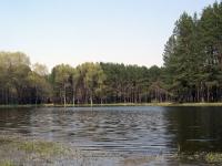 На стром озере