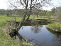 Наша речка