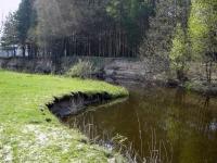 Наша речка около леса