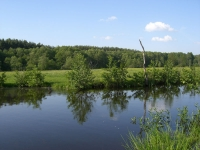 Наша любимая речка