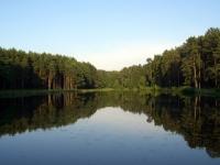 Старое озеро в парке